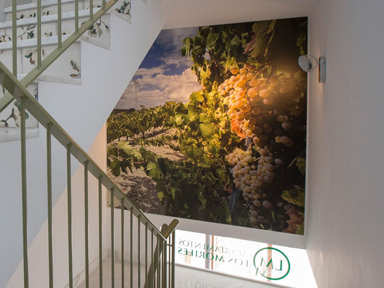 Foto en soporte rigido para subida de escaleras de Apartamentos Los Moriles.